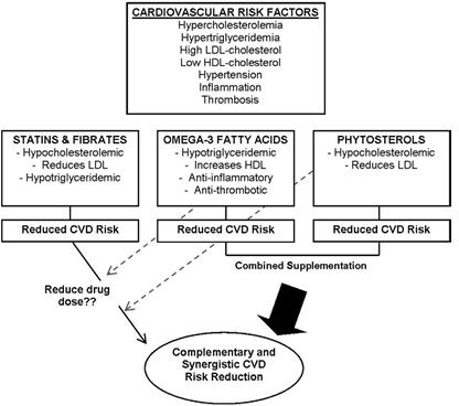 Kết hợp Phytosterol và acid béo Omega 3 giúp giảm cholesterol trong máu