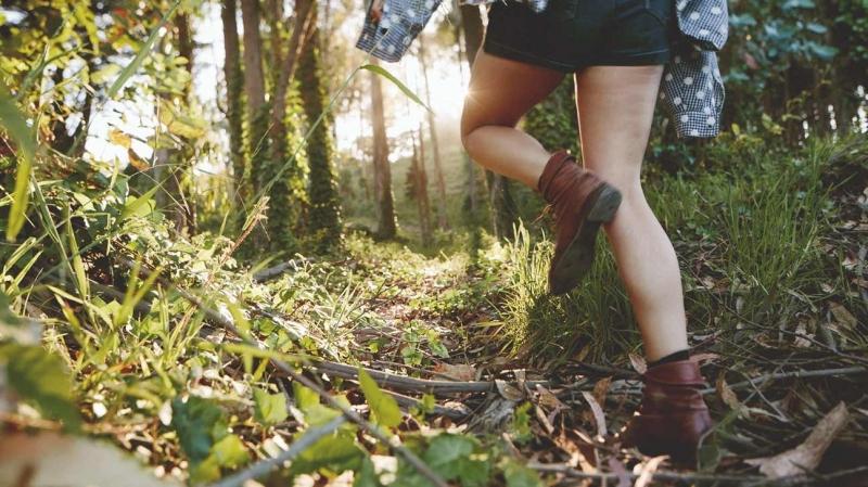 Tắm rừng - liệu pháp điều trị tinh thần