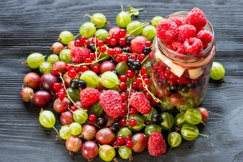 Berry là thực phẩm hàng đầu phòng chống ung thư vì giàu chất chống oxy hóa