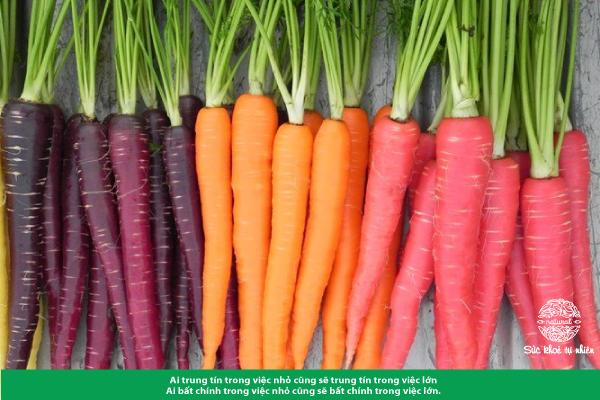 Tác dụng của cà rốt trong việc bảo vệ sức khỏe