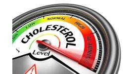 Những thông tin thú vị về Cholesterol