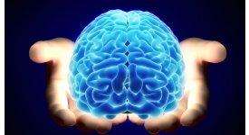 Tại sao não bộ của bạn cần được nghỉ phép?