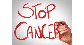 Diệt gốc tự do giảm nỗi lo ung thư