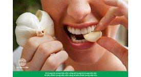 Tác dụng của tỏi đối với tăng cường sức khỏe