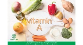 Vitamin A - Tất cả những điều bạn cần biết